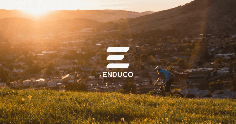 enduco offers Light version free of charge